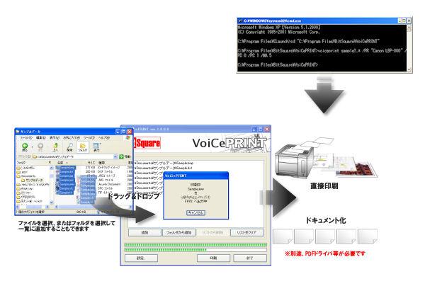 VoiCePRINT サーバー版