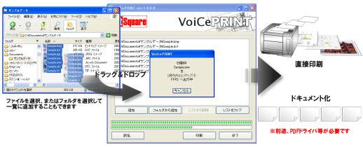 VoiCePRINT 標準版